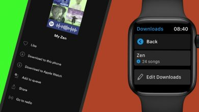 spotify Apple watch