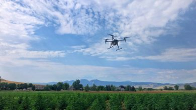 A new niche for commercial drones: the hemp industry